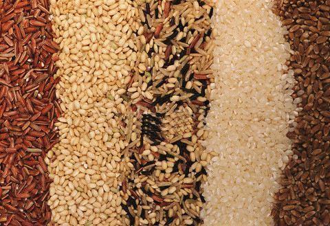 颗粒机使用中,颗粒饲料配方应该遵循的四个原则